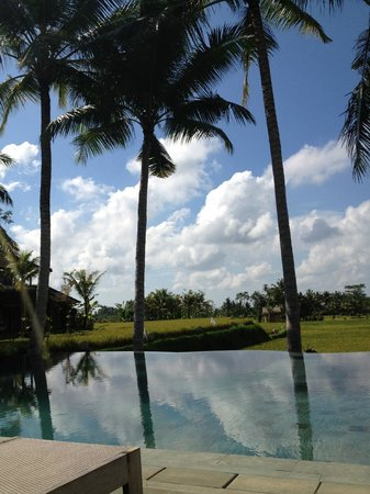 Mathis Retreat: View from the pool