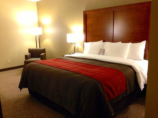 Comfort Inn Dayton - Huber Heights : Comfort Inn Dayton Newly Renovated Truly Yours King Bed Room