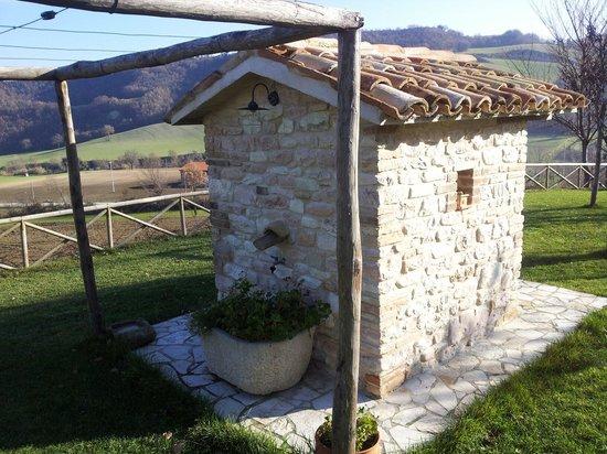 Agriturismo Casal San Sergio: Esterno
