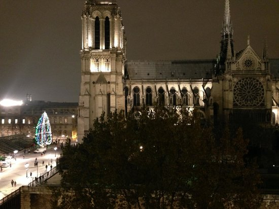 Quai Montebello : View of Notre Dame at night from the apartment window.