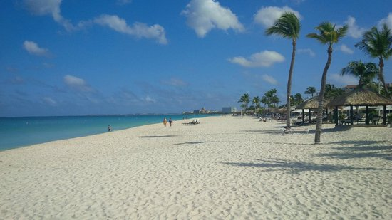 Bucuti & Tara Beach Resort Aruba: Look to the North