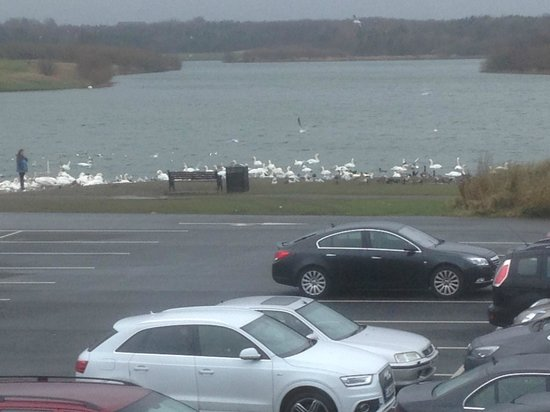 Premier Inn Ashington Hotel: Lake in the Morning