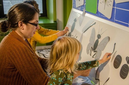 Buffalo Museum of Science: Build your own bug in the Bug Works studio