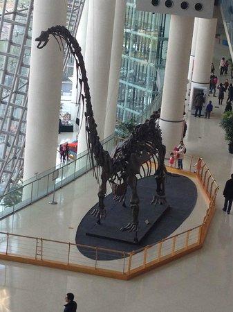 อีกมุม Picture Of Shanghai Science And Technology Museum
