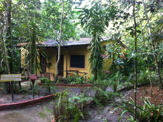 Amazon Ecopark Jungle Lodge: Casa amarela (melhores suites)