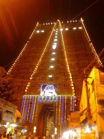Sri Ranganathaswamy Temple: srirangam Temple- MURALITHARAN photo