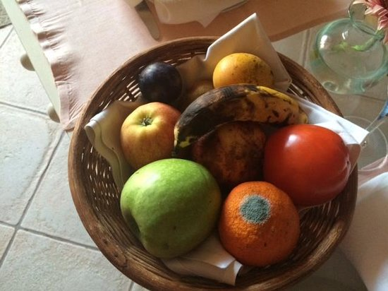 Iberostar Grand Hotel El Mirador : The fruit bowl left all of our stay