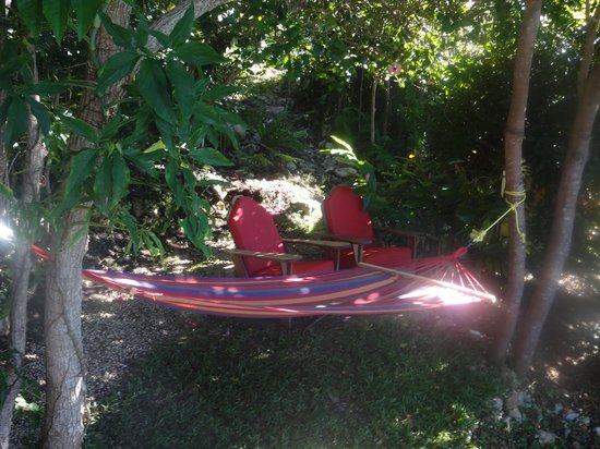 Good Hope Retreat : hammock and lounge chairs outside the cabin