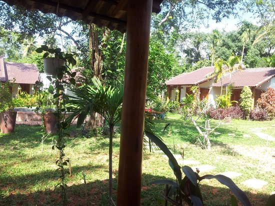 La Mer Resort Phu Quoc : the yard