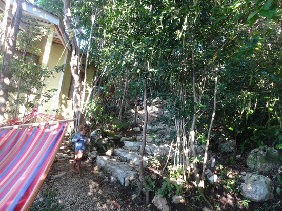 Good Hope Retreat: Rock pathway