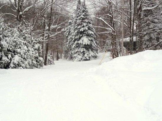 Garnet Hill Lodge and Ski Resort: Beautiful Trails