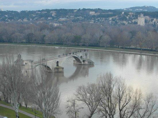 Rocher des Doms : Vista sul Ponte