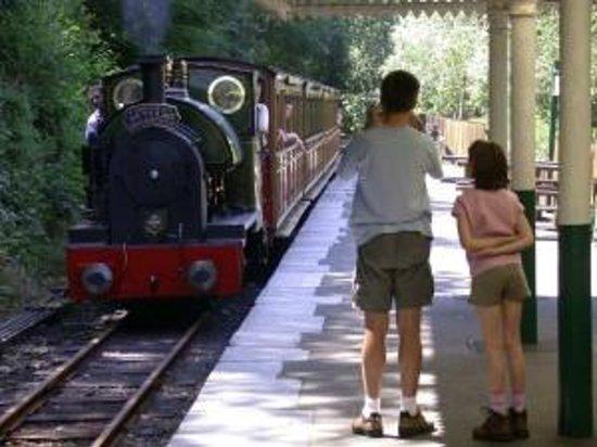 Talyllyn Railway: Great for photos