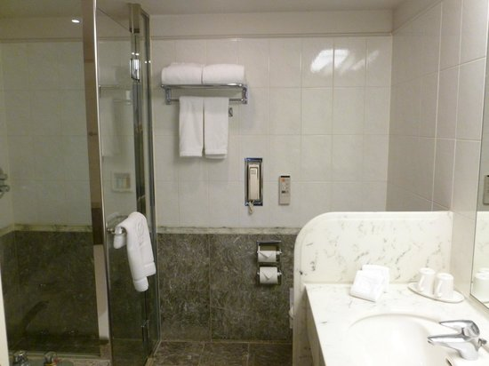 The Prince Park Tower Tokyo: Bathroom