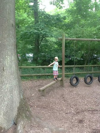 Queenswood Country Park: The children's playground