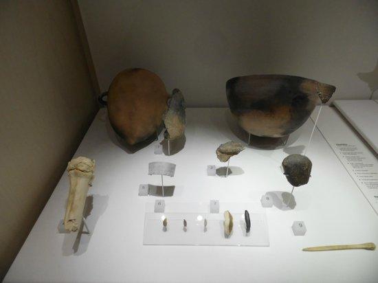 Museo de la Evolución Humana: Restos de los yacimientos