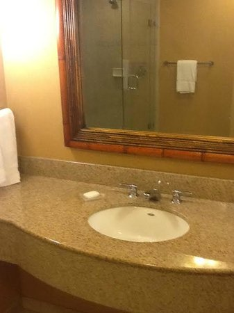 Hilton Garden Inn at PGA Village / Port St. Lucie: bathroom