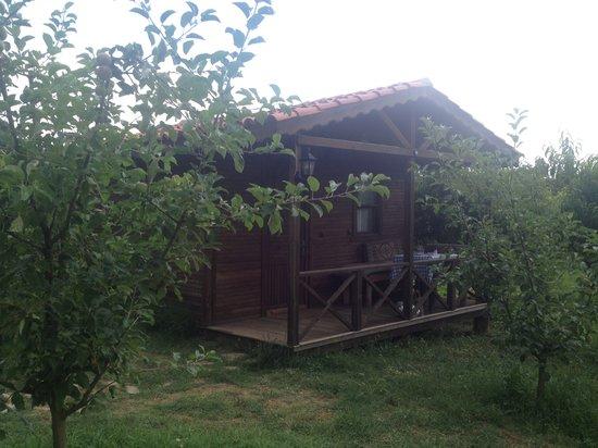 Salkim Village: ağaç ev