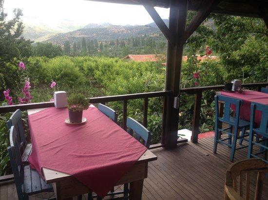Salkim Village: terastan bahçe görünümü