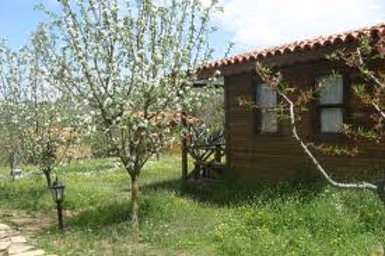Salkim Village: ağaç ev yan cephe