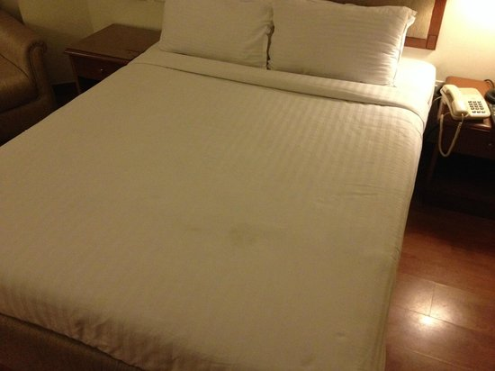 Katriya Hotel & Towers : Stained Bedsheet