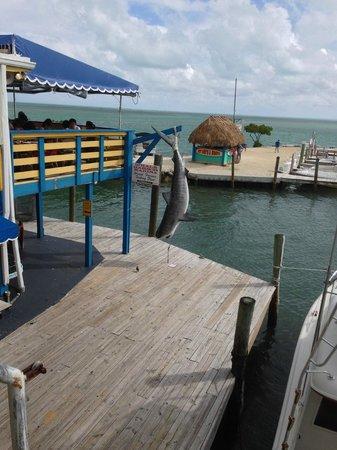 Wahoo's Bar and Grill : Blick aus dem Restaurantfenster
