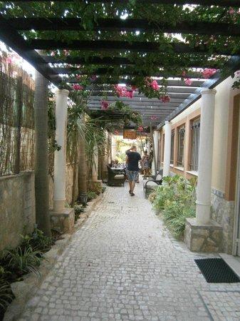 Dom Manuel Hotel: Overgrown entrance