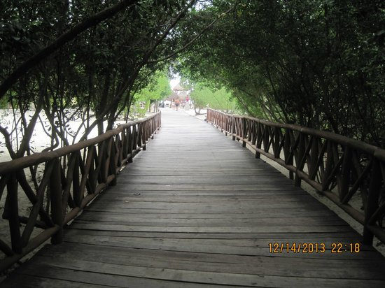 Iberostar Paraiso Maya: Walk way to the beach
