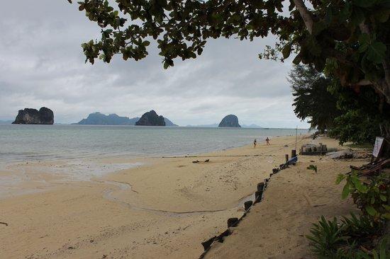 Thapwarin Resort : stranden