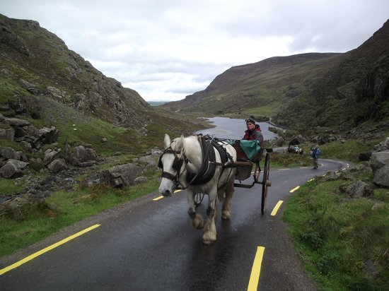 Gap of Dunloe: Jovi and his partner & with our gap land transportation