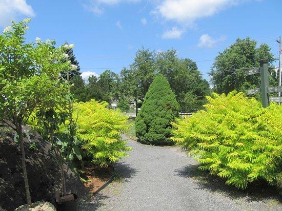 Berkshire Botanical Garden: japanese garden