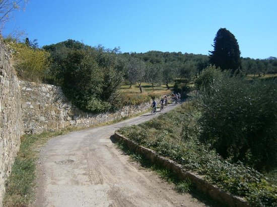 FiesoleBike Day Tours: Biking 3