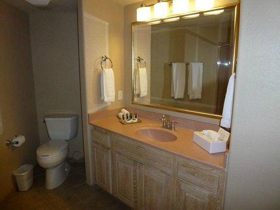 Sedona Summit Resort : Bathroom