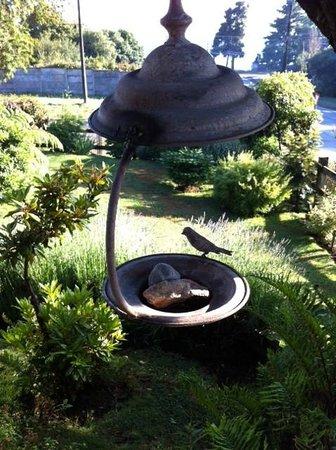 Casa Kalfu: Decoração do jardim
