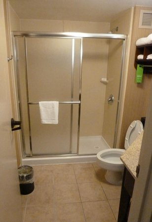 Hampton Inn Charleston - Airport / Coliseum : Bathroom for room 330