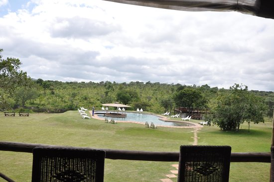 Nkambeni Safari Camp : La piscine vue du restaurant