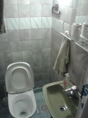 Guesthouse Borealis: Bagno e wc