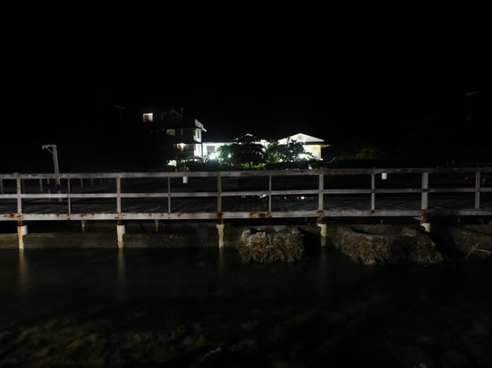 Coral View Beach Resort: Night view from the bar