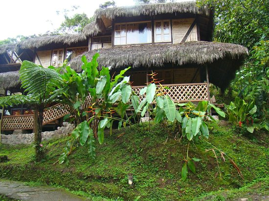 Maquipucuna Reserve & Ecolodge: rooms by the lodge center