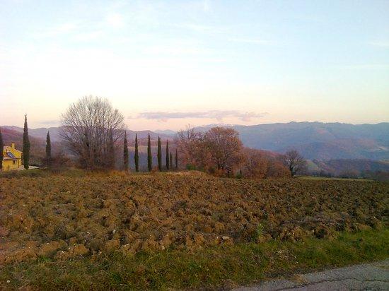 Agriturismo ColleParadiso: Il rosso della terra umbra in inverno