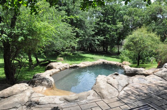 Blyde River Wilderness Lodge : La petite piscine