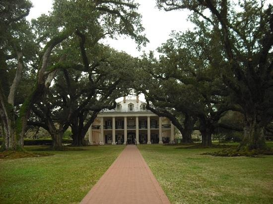 Oak Alley Plantation: view of house through trees