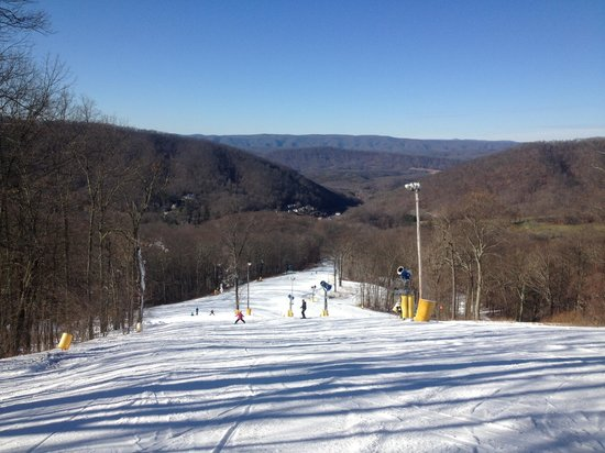 Homestead Ski Area: View From the (not very tall) Top