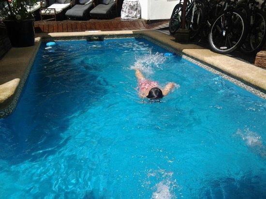 Hotel Boutique Vendimia Premium: como pez en el agua