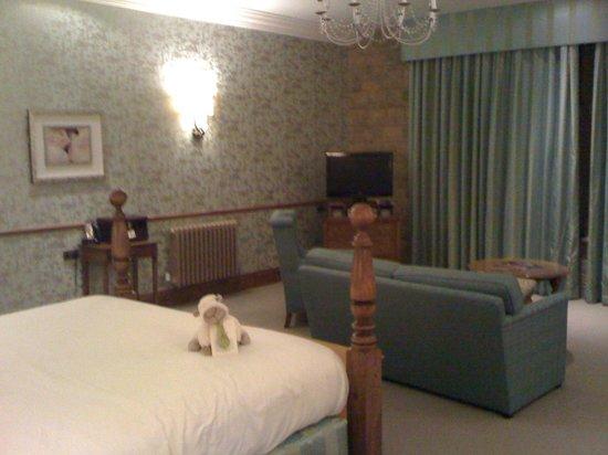 South Lodge Hotel: Scorcio della stanza