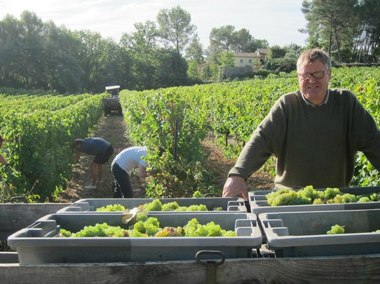 Domaine Rabiega : The host in the vineyard