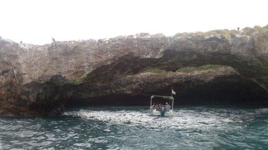 Explora Vallarta: Nature Tours, Adventure & Culture: Naturaleza intacta.