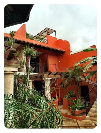 Luz En Yucatan : This was our room with the terrace above.