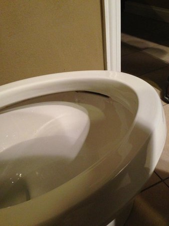 Champagne Lodge and Luxury Suites: room 119 toilet