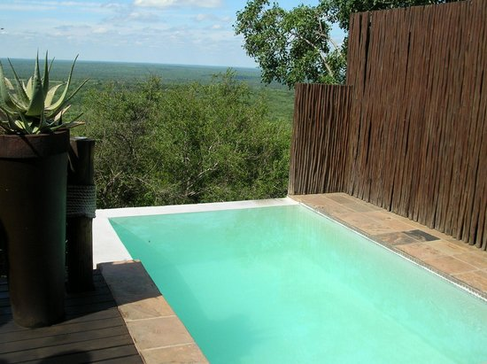Ulusaba Rock Lodge: Makwela Dusk suite plunge pool